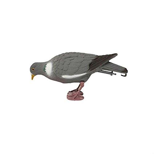 Richiamo stampo caccia Colombo Colombaccio piccione