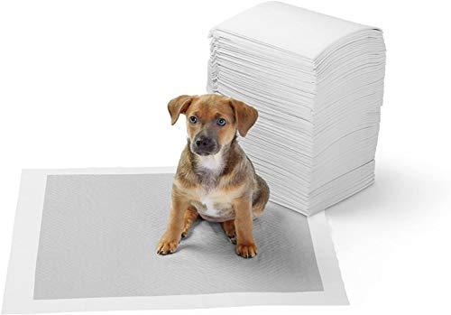 Amazon Basics - Tappetini igienici con carbone attivo per l'addestramento di cagnolini e altri animali domestici, misura standard, 120 pezzi