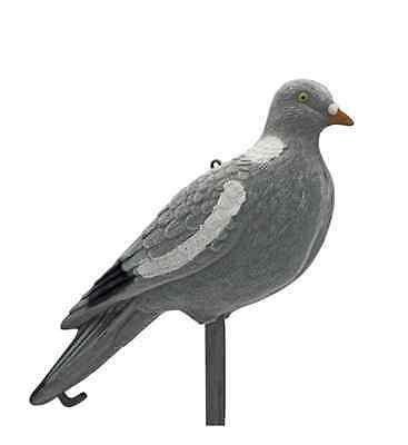 stampo colombaccio posati caccia colombo piccione