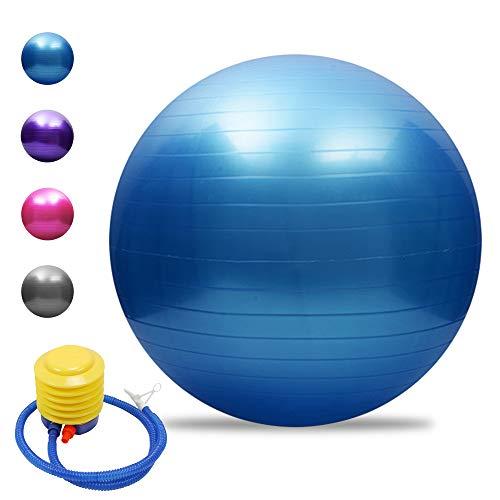 TOMSHOO Palla da Ginnastica, Palla Fitness, Palla Yoga Ball con Pompa Rapida, Anti-Scoppio, per Yoga e Pilates, Esercizi, Fitness, Allenamento, 45cm / 55cm / 65cm / 75cm
