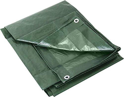 Labor 21297 Telone PVC Rinforzato con Occhieli, Verde, 2 x 3 m
