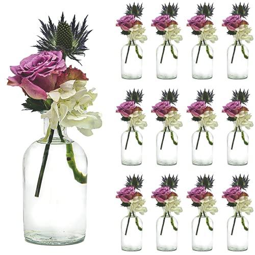 casavetro, Set da 6 o 12 piccoli vasi da fiori, decorazione da tavolo per matrimonio, feste, set di vasi di vetro trasparente (12 pezzi)