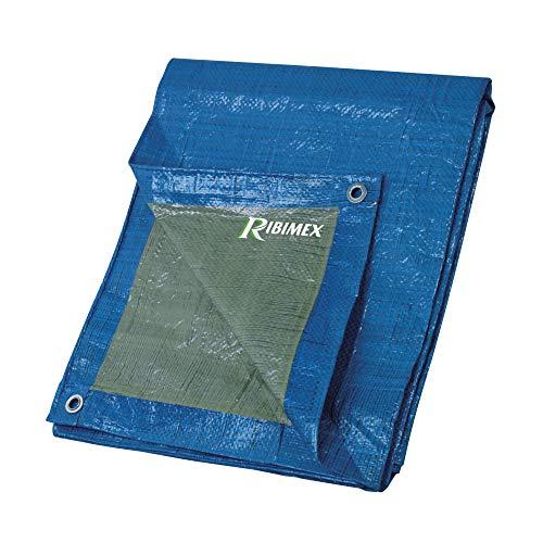 Ribimex PRB06502X03 Telo di Protezione, 2x3 m, 65 gr, Multicolore