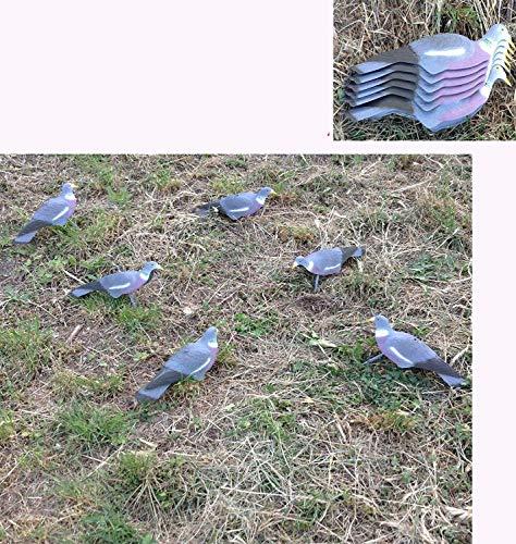 Generico stampi in plastica colombaccio colombi Colombo richiamo Piccione a Conchiglia Kit 6 Pezzi